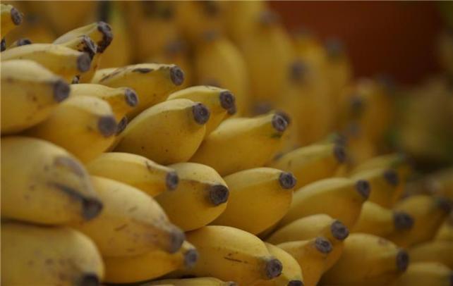 650_1000_bananas